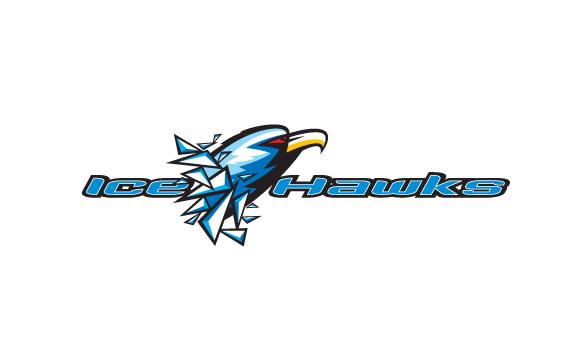 WL-2011-IceHawks-wType