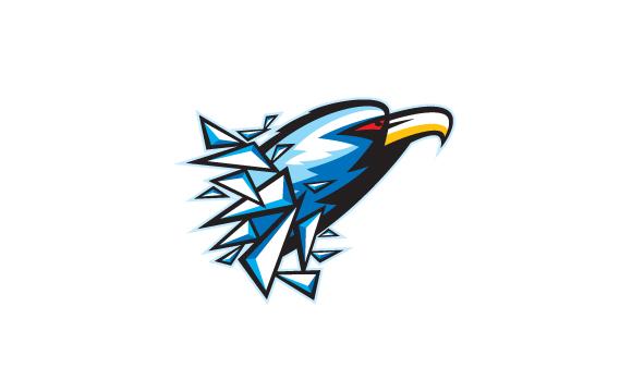 WL-2011-IceHawks